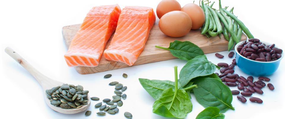 protein blog