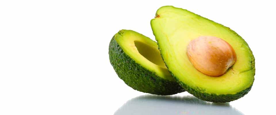 avocado blog
