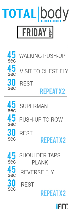 FRIDAY Circuit pin