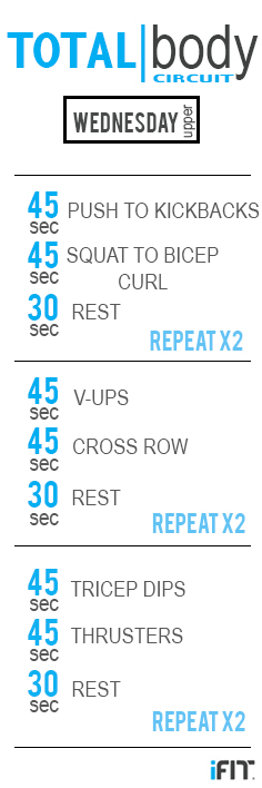 WEDNESDAY Circuit pin