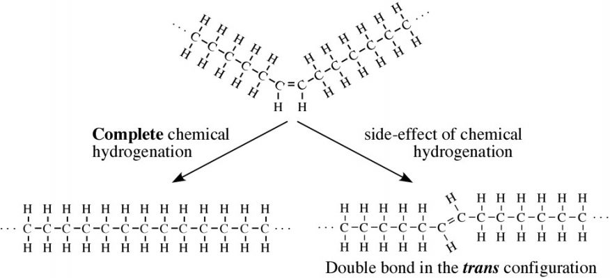 Hydrogenation
