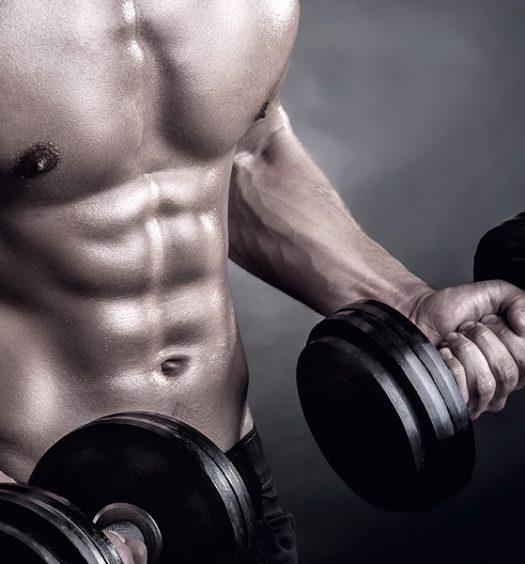 Intro to strength trainign 2